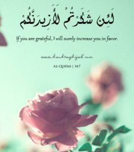 Islamic Quotes About Gratefulness (21)