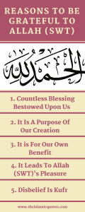 Gratitude Quotes 23 Islamic Quotes About Being Grateful nbsp