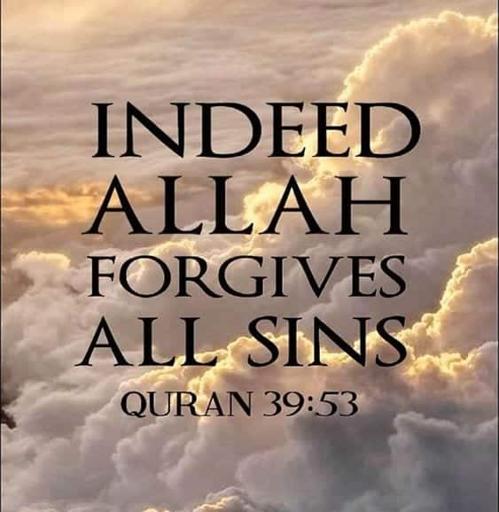 Forgiveness Quotes in Islam (27)