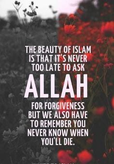 Forgiveness Quotes In Islam (16)