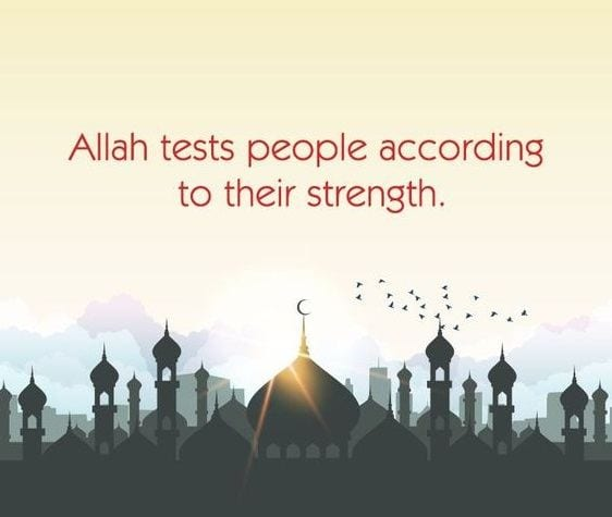 Islamic Quotes On Sickness (8)