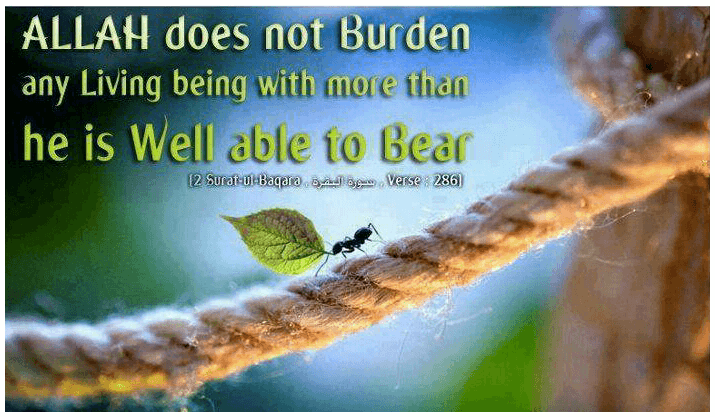 Islamic Quotes On Sickness (6)
