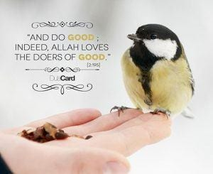 Islamic Quotes About Kindness Towards Animals (9)