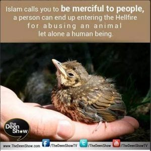 Islamic Quotes About Kindness Towards Animals (7)