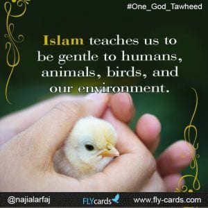Islamic Quotes About Kindness Towards Animals (6)