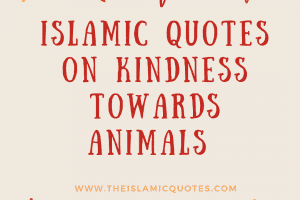 Islamic Quotes About Kindness Towards Animals (1)