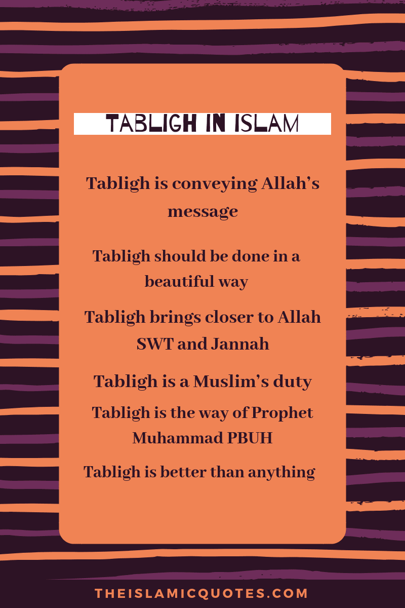 Tabligh In Islam (41)