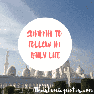 Sunnah to follow in daily life (29)