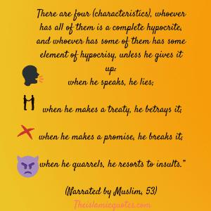 Hypocrisy in Islam quotes (17)