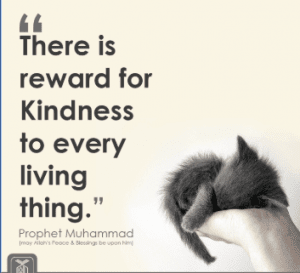 Islamic Quotes about Kindness (12)