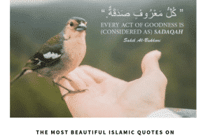 Kindness In Islam 10 Best Islamic Quotes on Kindness nbsp