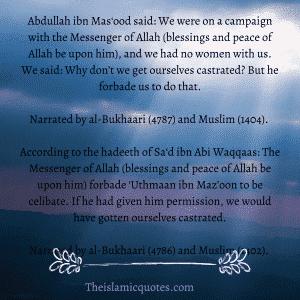 Contraception in Islam (8)