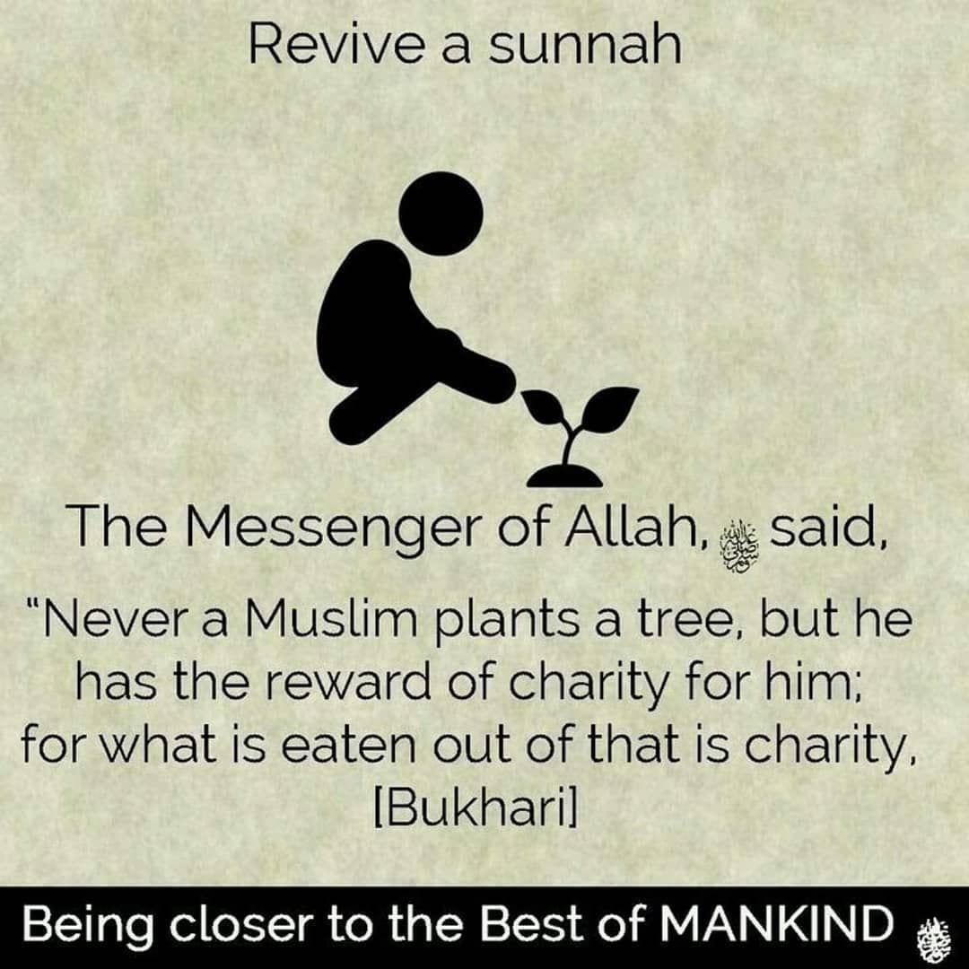 islamic family activities