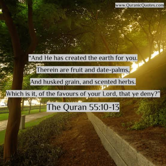 Lessons from surah rehman