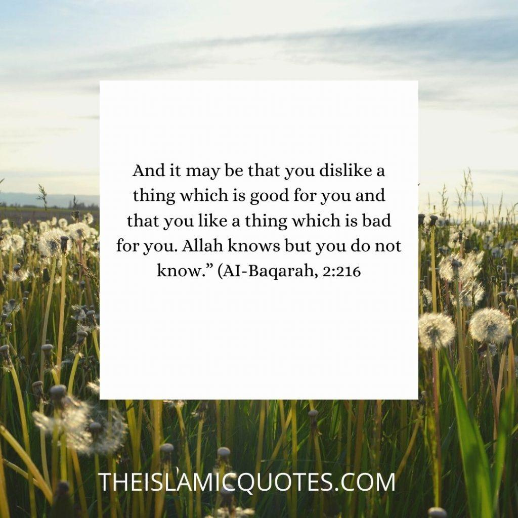 7 Quotes That Prove Allah is The Best Planner of All Affairs nbsp
