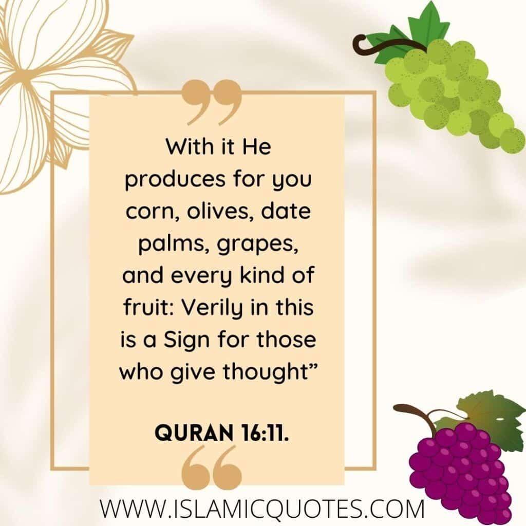Prophet Muhammad's Favorite Food